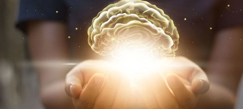 What is indoctrination? The role of indoctrination in the function of the five senses